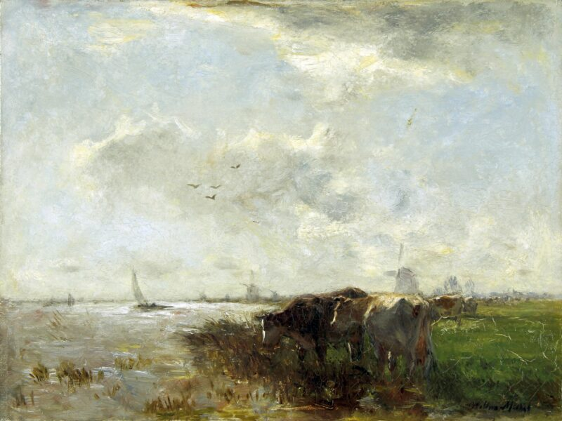 Maris Willem Cows by the river at the end of the day